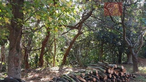 terreno residencial à venda, jardim mediterrâneo, cotia. - te1001