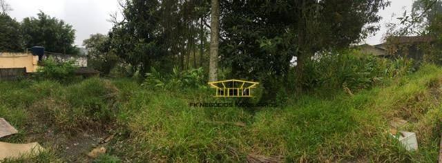 terreno residencial à venda, jardim santa luzia (santa luzia), ribeirão pires. - te0001