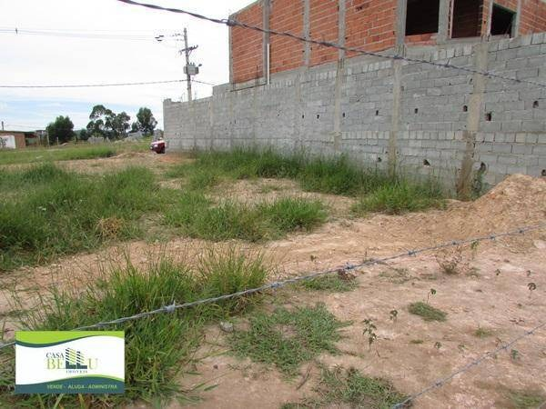 terreno residencial à venda, jardim santo antonio, franco da rocha. - te0024