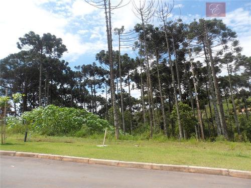 terreno  residencial à venda, paisagem renoir, cotia. - te0530