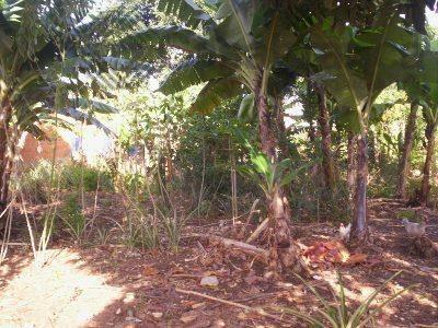 terreno residencial à venda, parque são bento, sorocaba - te0205. - te0205