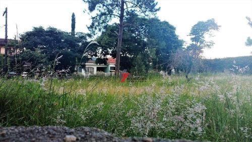 terreno residencial à venda, samambaia parque residencial, atibaia. - te0466