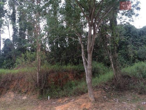 terreno  residencial à venda, são paulo ii, cotia. - te0195