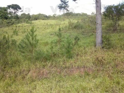 terreno residencial à venda, vila verde, ibiúna - te0092. - te0092