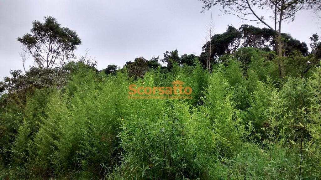 terreno, ressaca, itapecerica da serra - r$ 250 mil, cod: 2047 - v2047