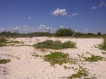 terreno riviera maya