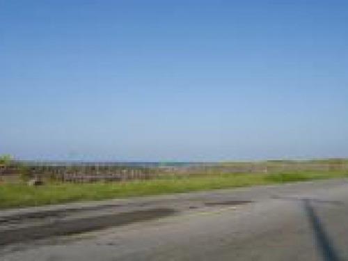 terreno rumbo a alvarado, frente al mar