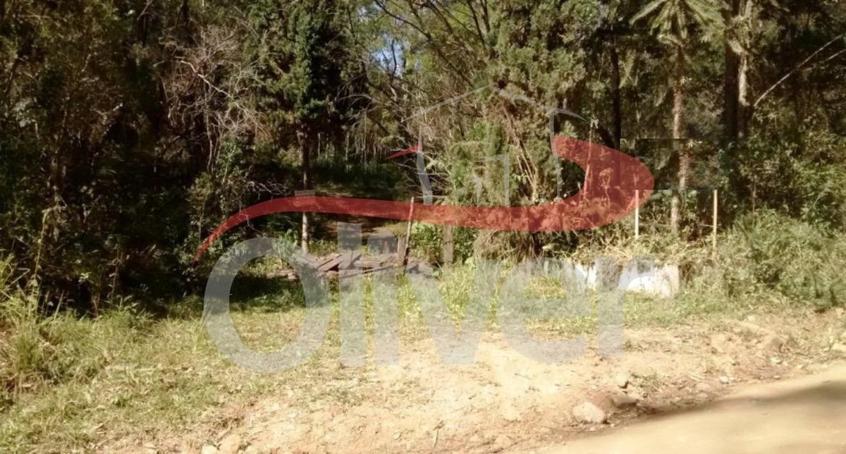 terreno rural angelina, sc 281, interior, angelina, santa catarina - te00048 - 33590845