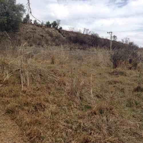 terreno rustico en renta  9.000 m2   rincon verde