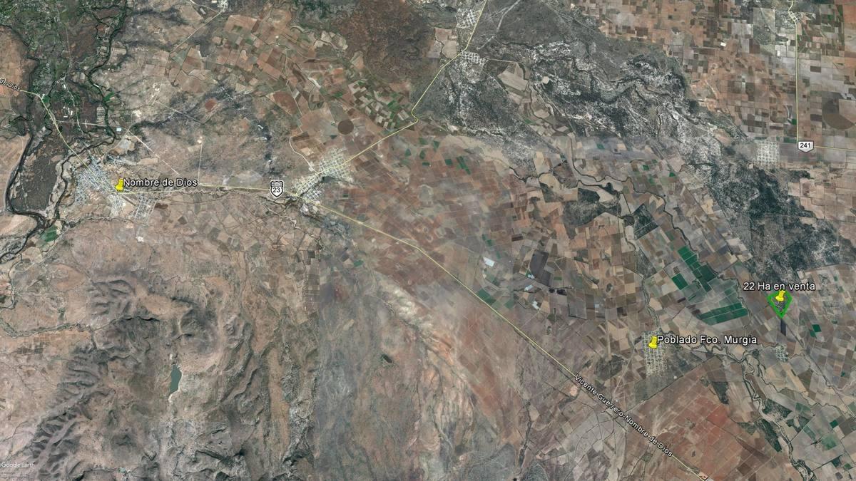 terreno rustico en venta en mpio. nombre de dios dgo.