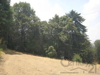 terreno rustico inclinado con superficie de 20,000m2