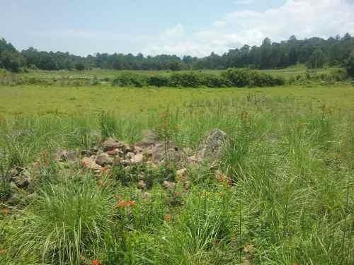 terreno san juan amanalco