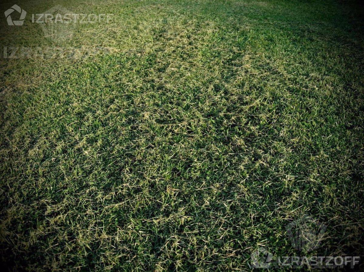 terreno - san matias
