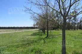 terreno - santa ines - lote - canning - esteban echeverría