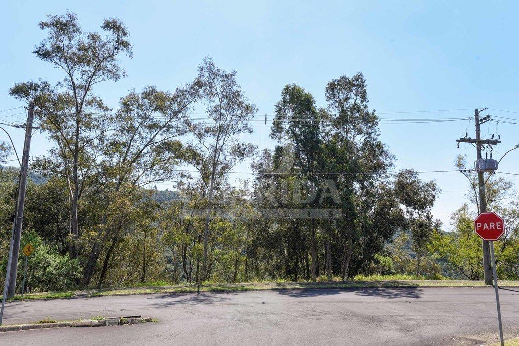 terreno - santa isabel - ref: 198598 - v-198710