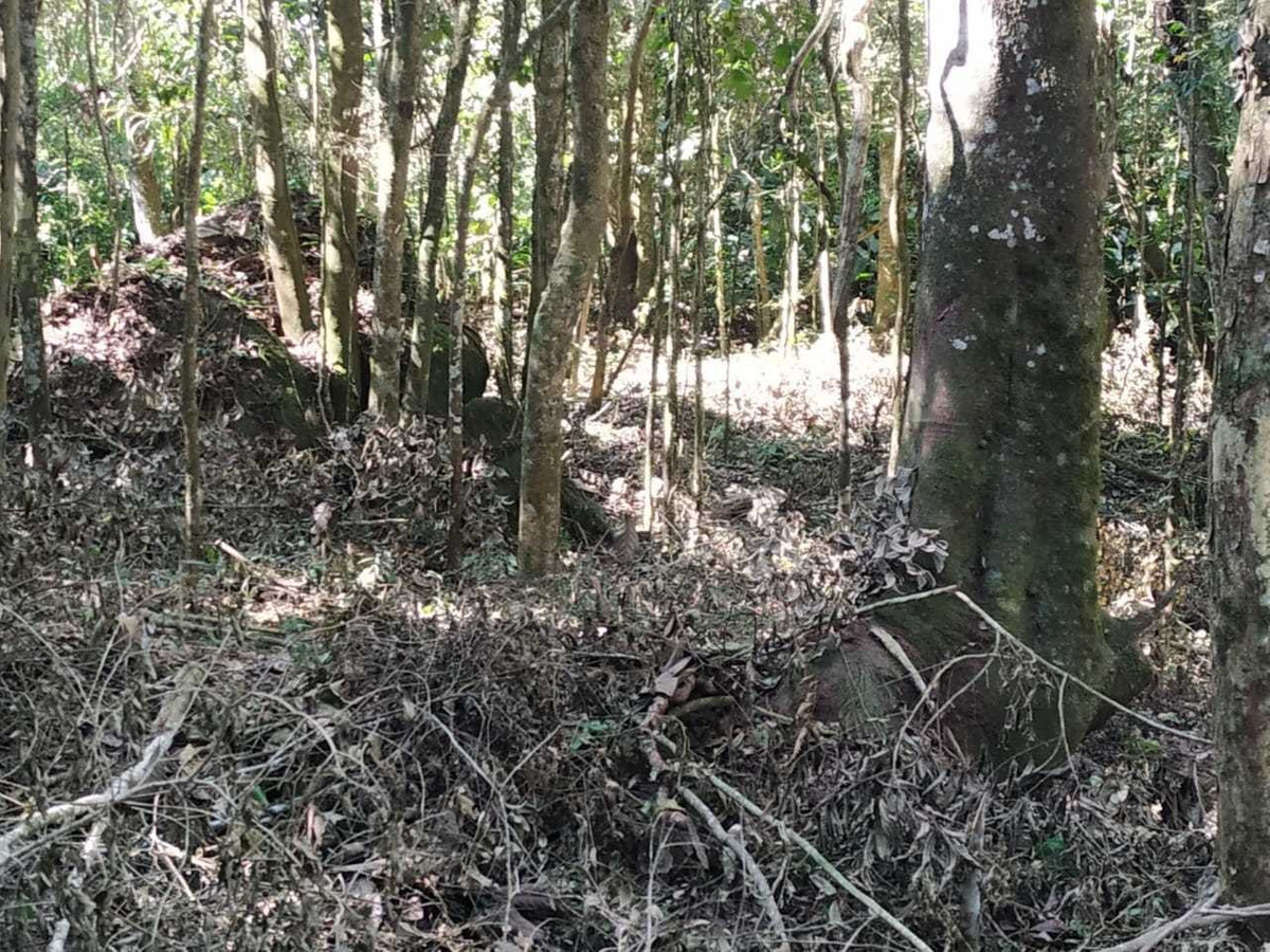 terreno santa izabel - igaratá - 5.000 m² para chácara