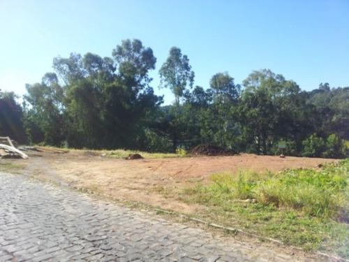 terreno - sao jose - ref: 87748 - v-87748