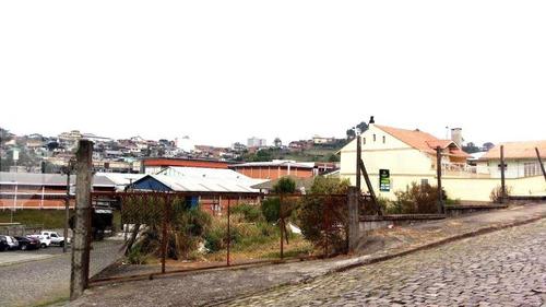 terreno - sao leopoldo - ref: 239042 - v-239042