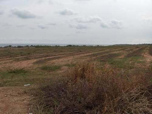 terreno semiurbano por carretera a puerto escondido