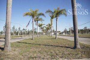 terreno sobre avenida con habilitacion comercial - tierra de sueños puerto san martin