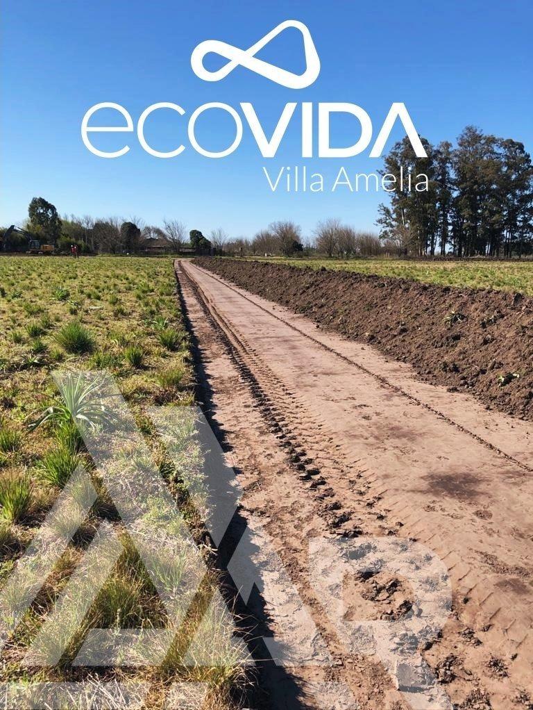 terreno sobre calle pavimentada ideal para negocio en villa amelia ecovida