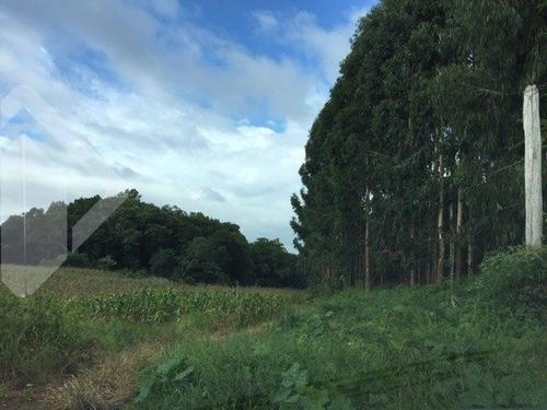 terreno - tamandare (distrito) - ref: 219371 - v-219371