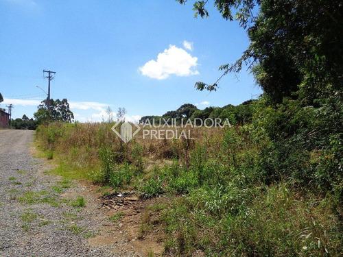 terreno - tamandare (distrito) - ref: 250171 - v-250171