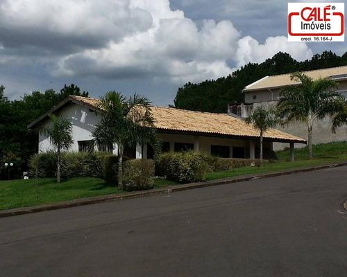 terreno - te01026 - 31941516