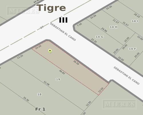 terreno - tigre