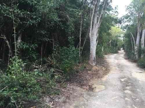 terreno titulado con frente de calle cerca de cenote jaguar
