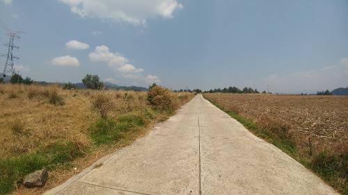 terreno totalmente plano y con excelente acceso