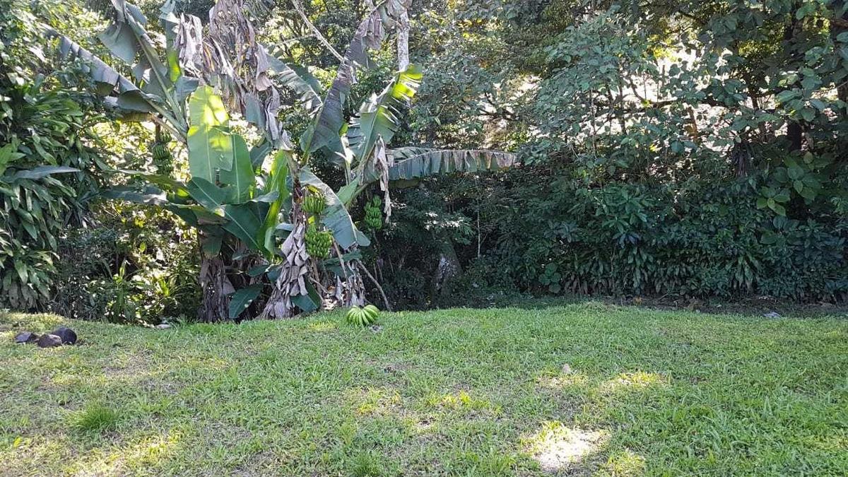 terreno tronadora tilaran guanacaste