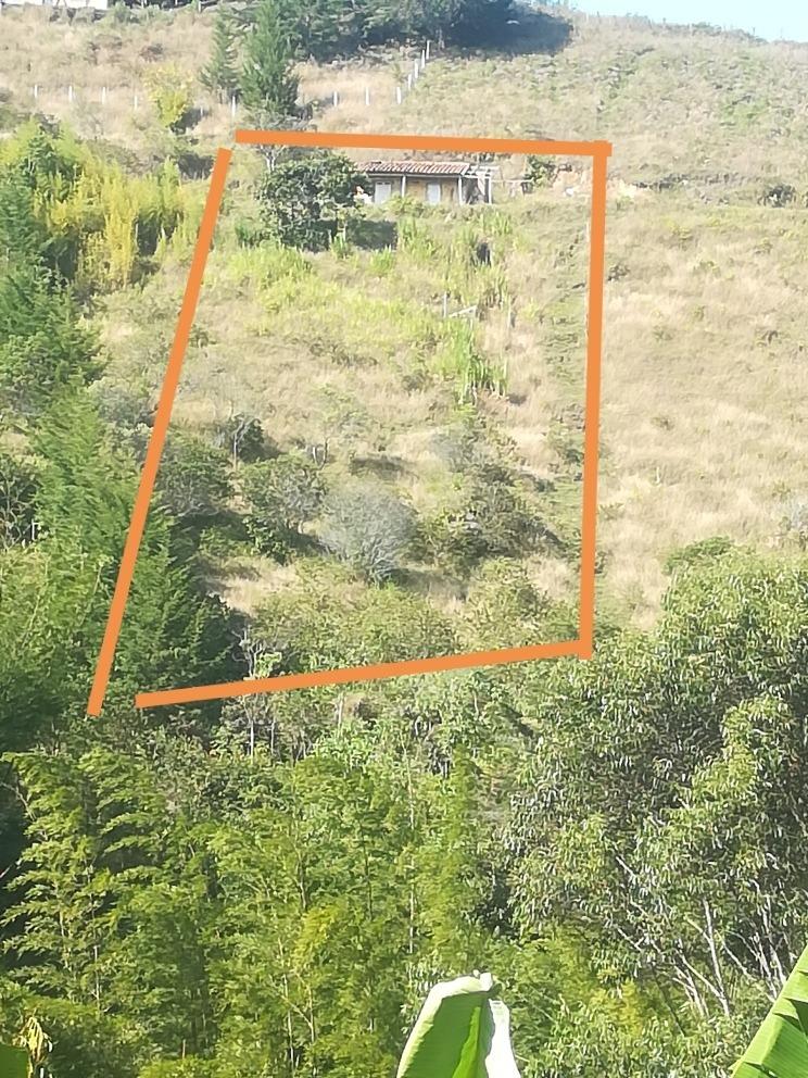 terreno  ubicada en el peñol