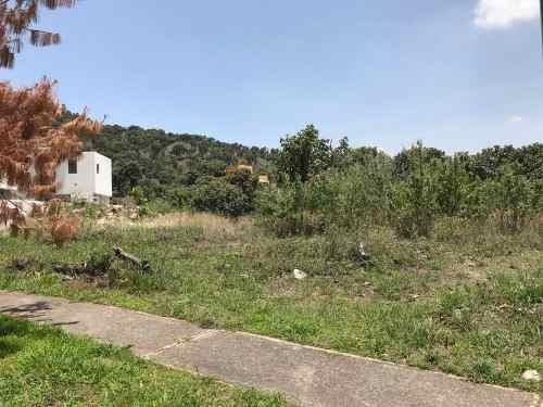 terreno ubicado en paseo de los cedros el palomar segunda se