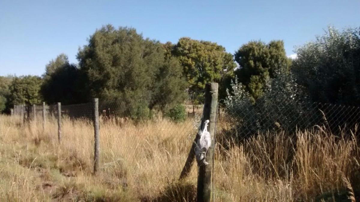 terreno ubicado en villa huechulafquen- zona turística
