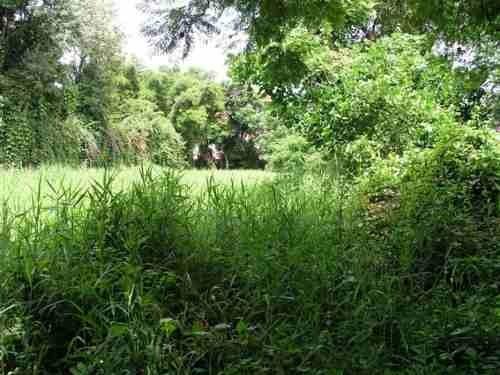terreno urbano en acapantzingo / cuernavaca - caen-211-tu