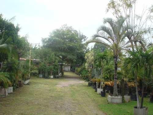 terreno urbano en atlacomulco / jiutepec - plu-210-tu*