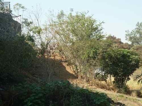 terreno urbano en bosques de cuernavaca / cuernavaca - caen-204-tu
