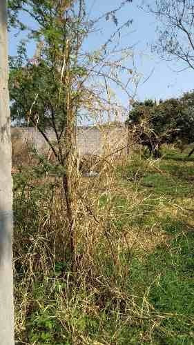 terreno urbano en campo sotelo / temixco - grb-522-tu