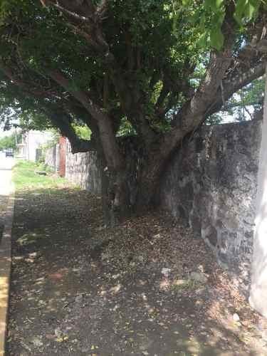 terreno urbano en centro / xochitepec - grb-612-tu