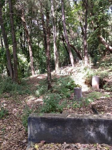 terreno urbano en del bosque / cuernavaca - ham-445-tu*