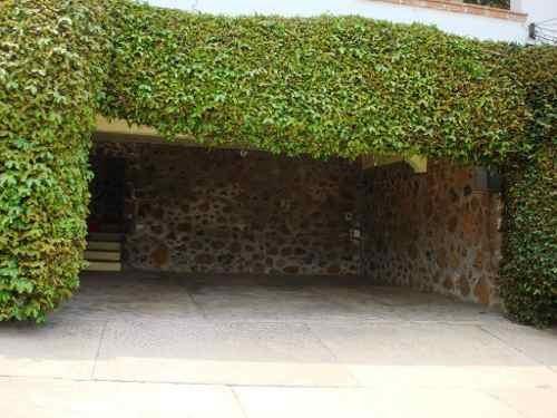 terreno urbano en delicias / cuernavaca - plu-278-tu*