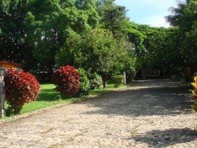 terreno urbano en emiliano zapata centro / emiliano zapata - plu-59-cs