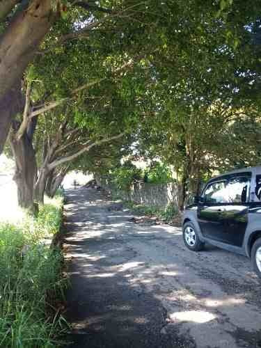terreno urbano en jardines de delicias / cuernavaca - maru-405-tu