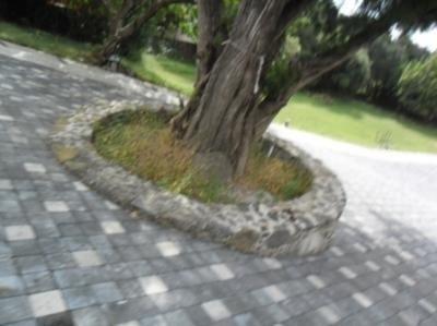 terreno urbano en ocotepec / cuernavaca - mrl-182-tu#