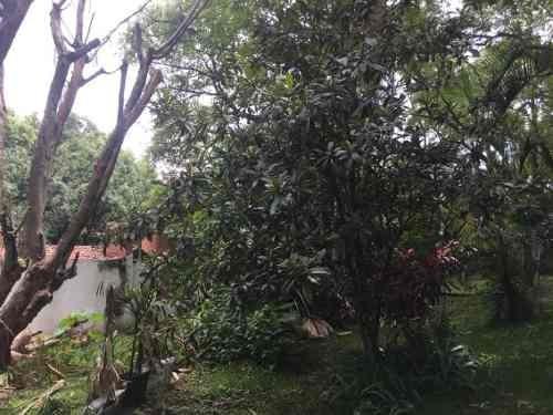 terreno urbano en poblado acapatzingo / cuernavaca - caen-240-tu#