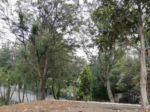 terreno urbano en rancho cortes / cuernavaca - ham-394-tu