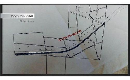 terreno uso industrial paseo bicentenario sup. 213 hectáreas