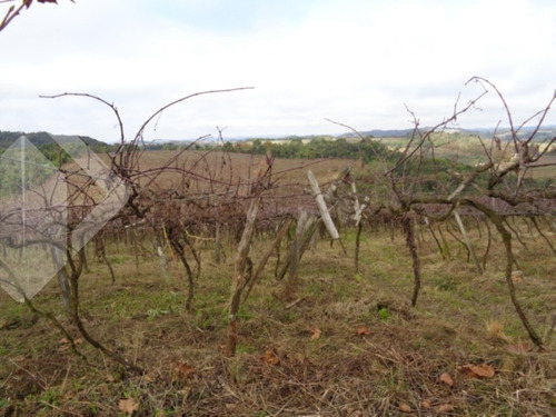 terreno - vale dos vinhedos - ref: 193401 - v-193401