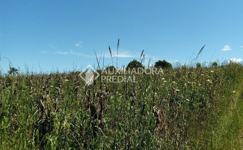 terreno - vale dos vinhedos - ref: 242050 - v-242050